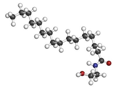 PEA-Palmitoylethanolamid